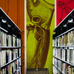 printed wallpaper in a library setting